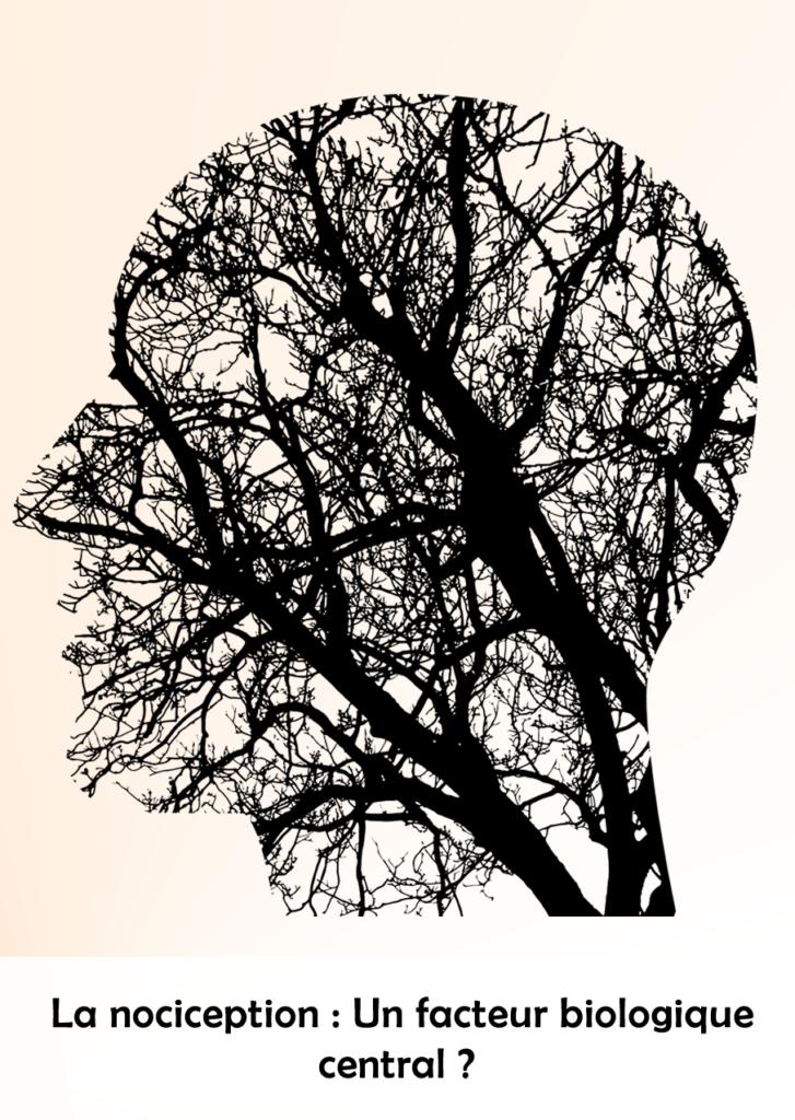La nociception : Un facteur biologique